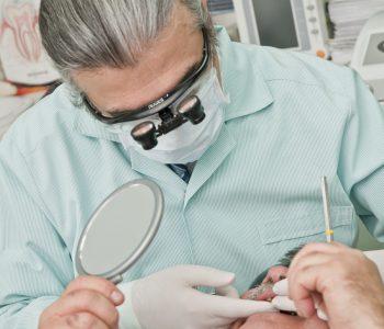 dentysta, uslugi stomatologiczne